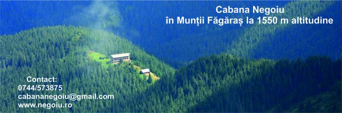 montana negoiu www_negoiu_ro 2015
