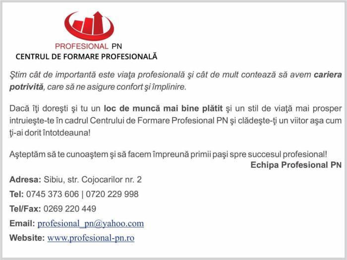 profesional pn 2017